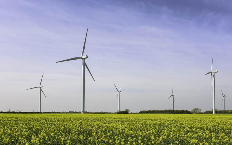 wind farm in england